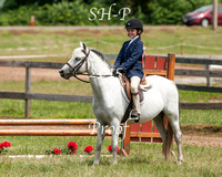 short Stirrup - On The Flat CCHA 08/08/15