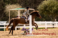 Ashley Hall Annual Horse Show Mar. 2015